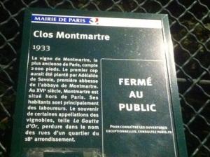 La vigne de Montmartre a été plantée dès 1933, renouant avec un passé plus ancien.